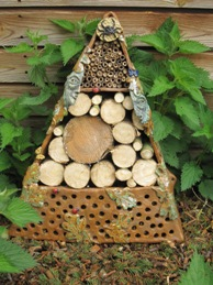 Bug Nest Box
